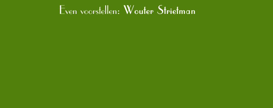 Even voorstellen: Wouter Strietman